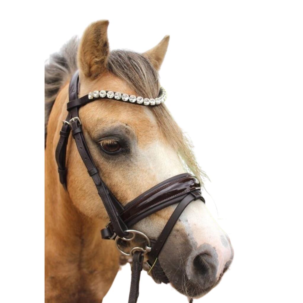 Ice Equestrian Browband - Royal Charmer