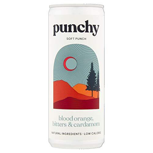 Punchy Blood Orange, Bitters & Cardamom Soft