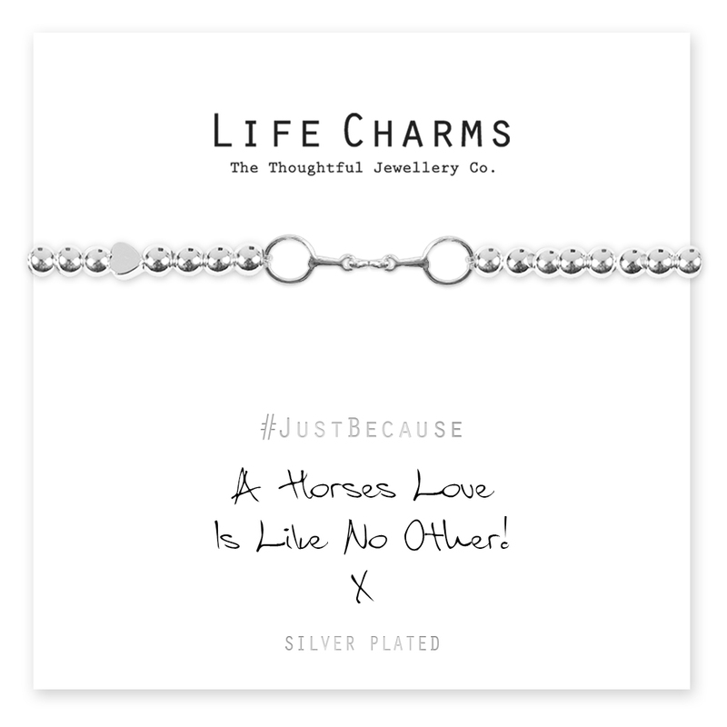 Lifecharms - A horses love is like no other